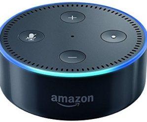 Amazon Alexa and Amateur Radio