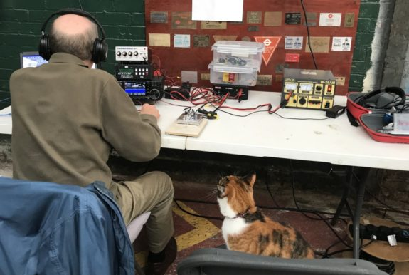 Tiger, fascinated by Morse operator Dave G4AJY from SEARS