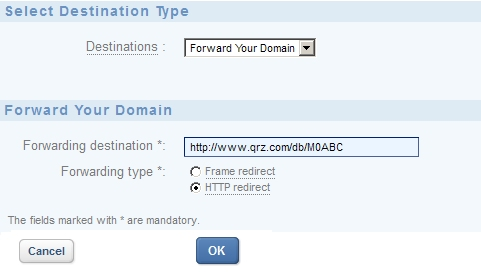 Forwarding your web domain