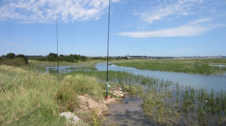 View from Two Tree Island, with antennas